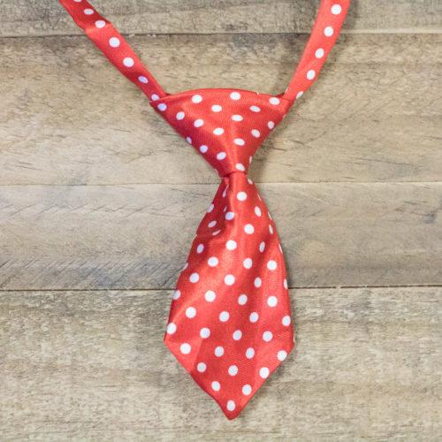 Adjustable Pet Red & White Polka Dot Necktie
