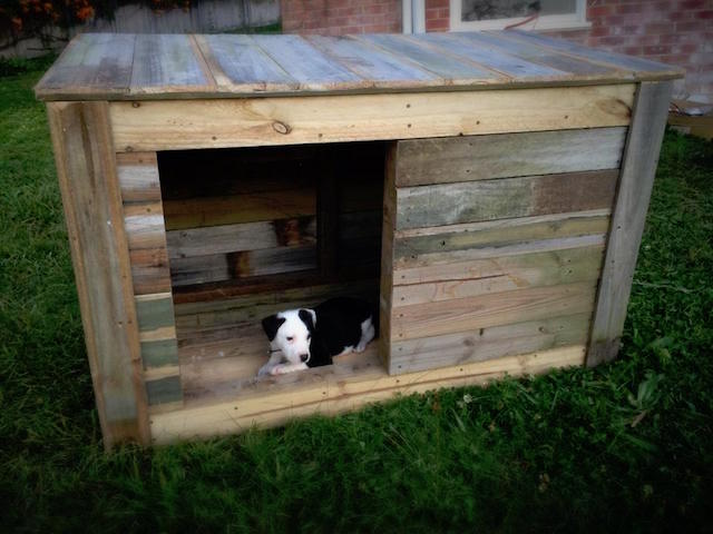 DIY Dog House Ideas For Crafty (And Not-So-Crafty) Dog rs Ideas For Dog House Designs on luxury homes for dogs, interior design for dogs, architecture for dogs, garage for dogs, painting for dogs, furniture for dogs, swimming pool for dogs, beach house for dogs, dream house for dogs,