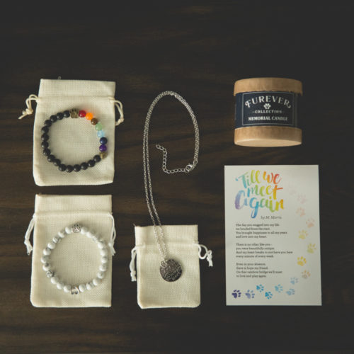 Pet Memorial Gift Box: Provides Meals To An Entire Shelter In Loving Memory of Your Pup
