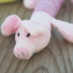 Project Play Pig Squeaky Toy: Get a Toy, Give a Toy to a Shelter Dog In Need