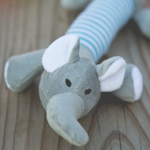 Project Play™ Elephant Squeaky Toy: Get a Toy, Give a Toy to a Shelter Dog In Need