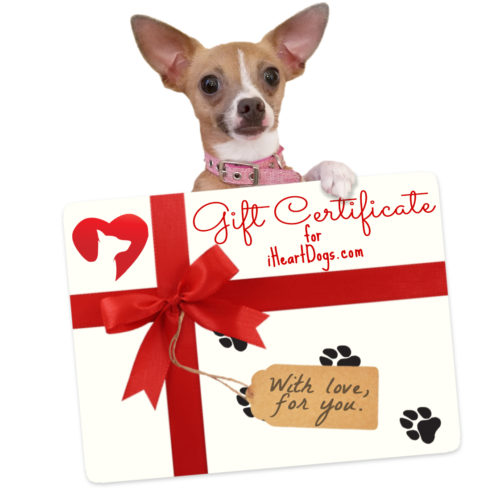 Digital Gift Certificate - Digital Gift Card