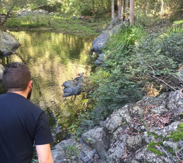 flat-waters-lick-creek-chesapeakes