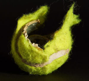 The Crazy Looking Safer Alternative To A Tennis Ball That Dogs Are