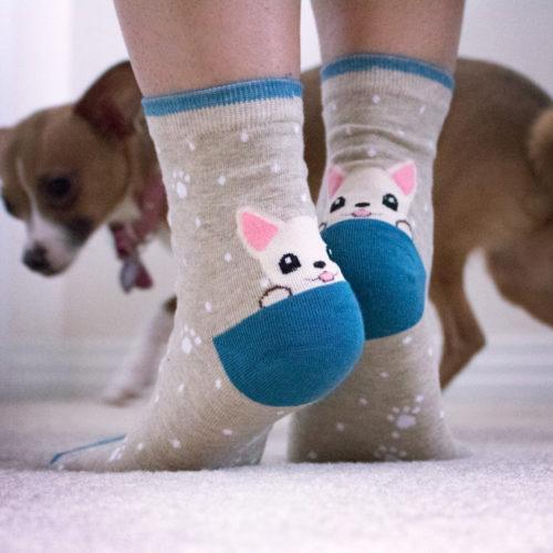 Light Brown Blue Trim White Puppy Socks