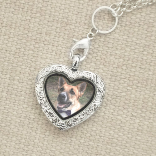 Furever™ in My Heart Locket Necklace