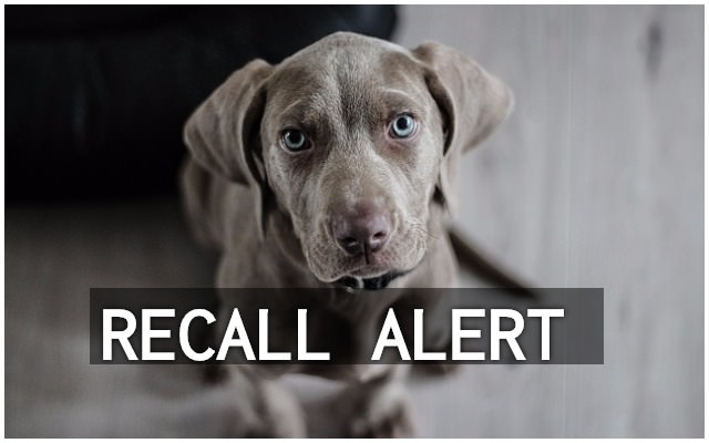 recall alert another dog food brand orders recall after possible euthanasia drug contamination. Black Bedroom Furniture Sets. Home Design Ideas