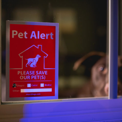 Reflective & UV Resistant 2-Pack Pet Alert Stickers: Use by Every Door & Window of Your Home
