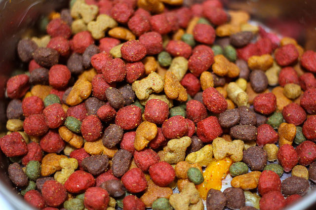 Pros And Cons Of Different Types Of Dog Food Iheartdogs Com