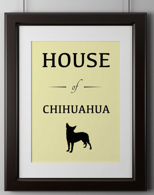 House of Chihuahua Poster