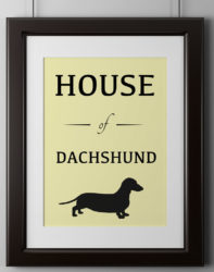 House of Dachshund Poster