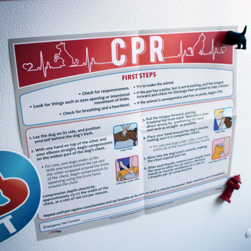 Pet CPR Poster