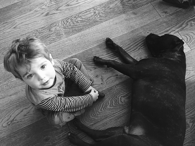 Ask A Vet: Why Is My Dog Afraid Of Children & What Can I Do About It?