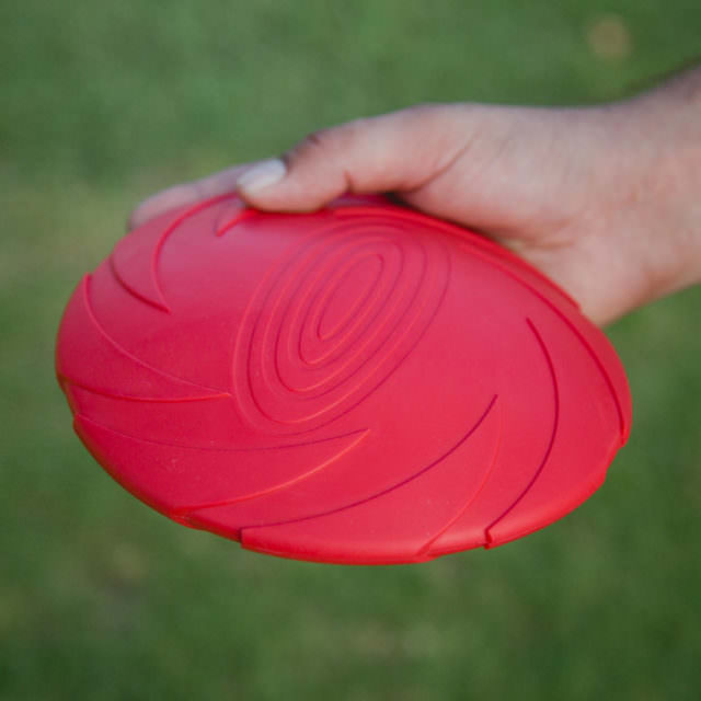 Flexible Flying Disc by Project Play™