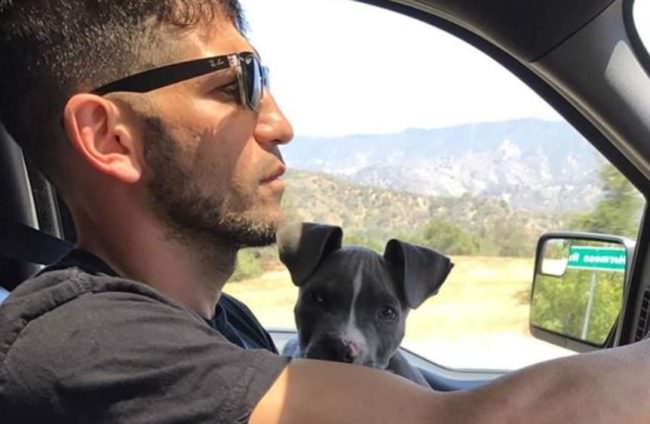 Hollywood Pit Bull Lover Adds A Third Rescue Pup To His Family