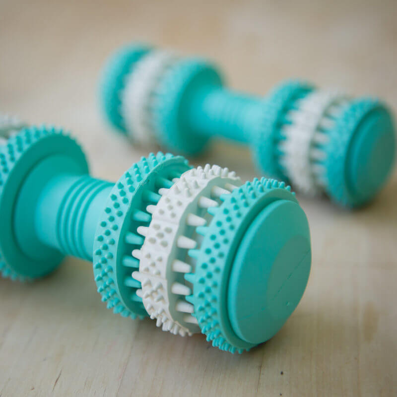Fresh Mint Scented Brushing Bone by Project Play ™