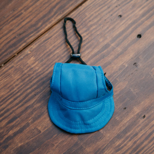 Doggy Baseball Hat - Royal Blue