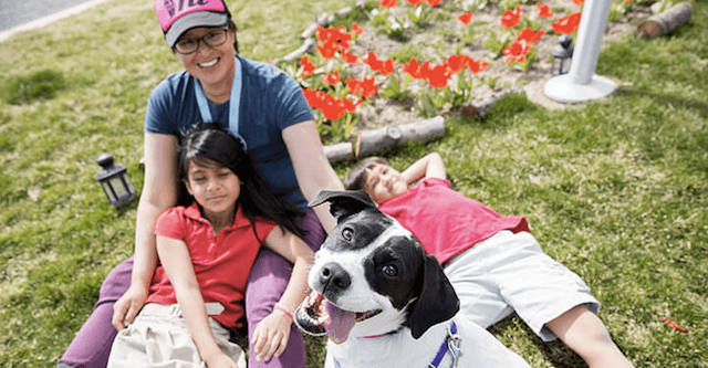 Rescue Dog Becomes The Best Medicine For Woman Battling Cancer & Her 2 Children