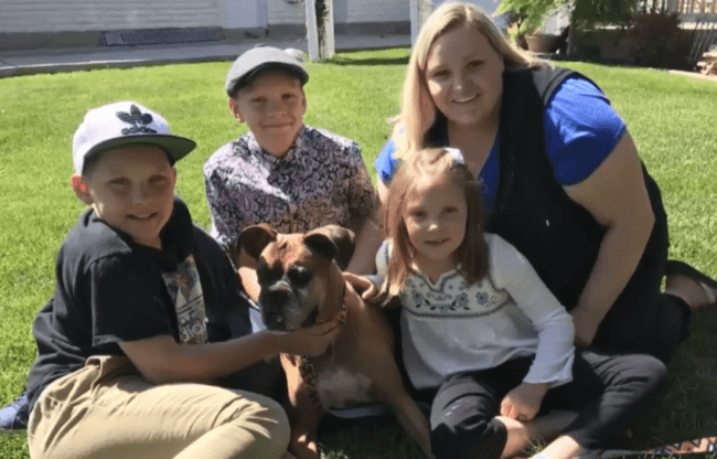 Family Spots Their Dog Online 6 Months After They Thought She Was Euthanized