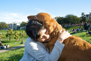 The 10 Most Cuddly Canine Breeds