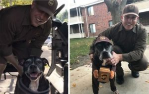 Canine Surprises Her Favourite UPS Driver By Dressing Like Him For Halloween