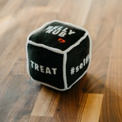 Doggie Dice™: The Toy That's Also a Bonding Game by Project Play™