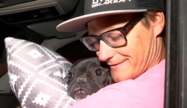 Lost Therapy Dog Reunited With Owner After Las Vegas Tragedy