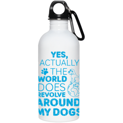 Yes, Actually Stainless Steel Water Bottle