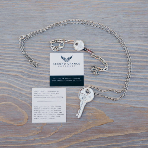 Second Chance Movement Gift Pack Silver