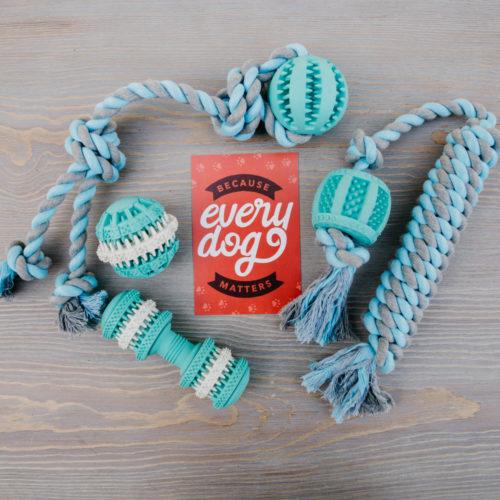 Large Dog – Fresh & Clean Dental Toy Gift Bundle