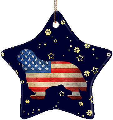 Cavalier USA Ceramic Star Ornament