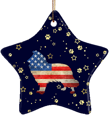 Collie USA Ceramic Star Ornament