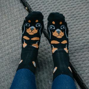 Black Dachshund Print Socks
