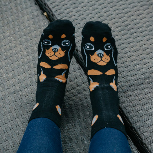 Black Dachshund Print Socks
