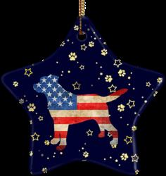 Lab USA Ceramic Star Ornament