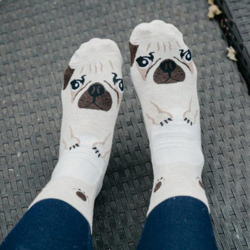 Ivory Pug Print Socks