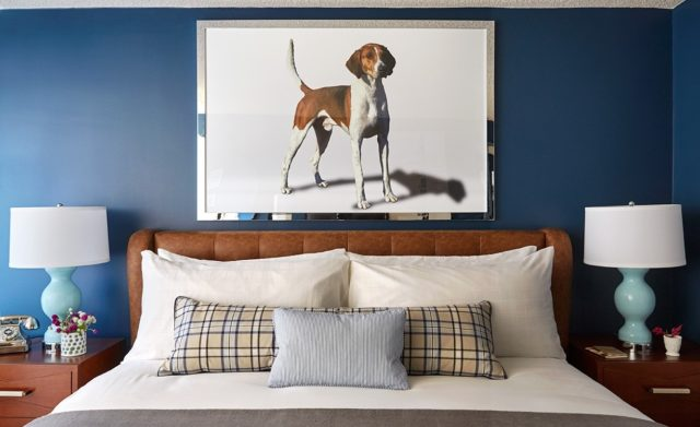 This themed hotel chain welcomes dogs doesnt charge a pet fee the american foxhound is virginias state dog mozeypictures Image collections