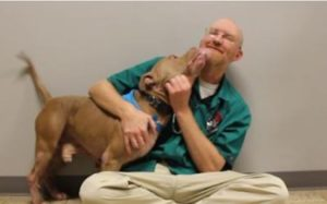 Vet Requested To Euthanize Canine Decides To Rework His Life As a substitute