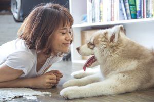 Research Reveals That Smiling, Gazing At Your Canine Makes Them Love You Extra