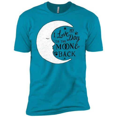 To The Moon And Back Boys' Premium T-Shirt