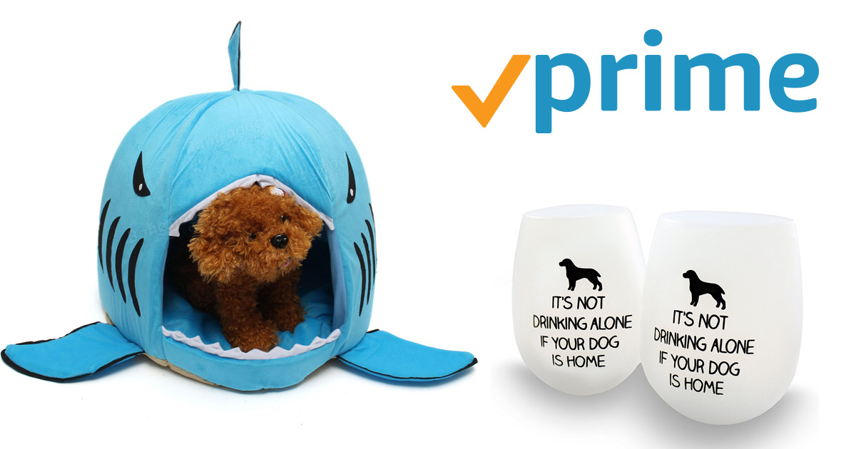 We Scoured Amazon Prime and Found The Best Gifts for Dog Lovers