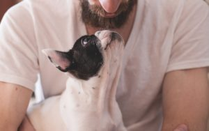 Scientifically Confirmed Methods To Present Your Canine How A lot You Love Them