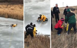Rescue Employees Pull Canine Trapped In Frozen Creek To Security