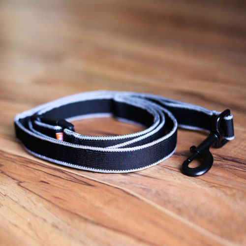 Secret Agent Leash™ the Subtly Sophisticated, Durable Leash For Any Occasion – 5 feet (SECRET STORE)