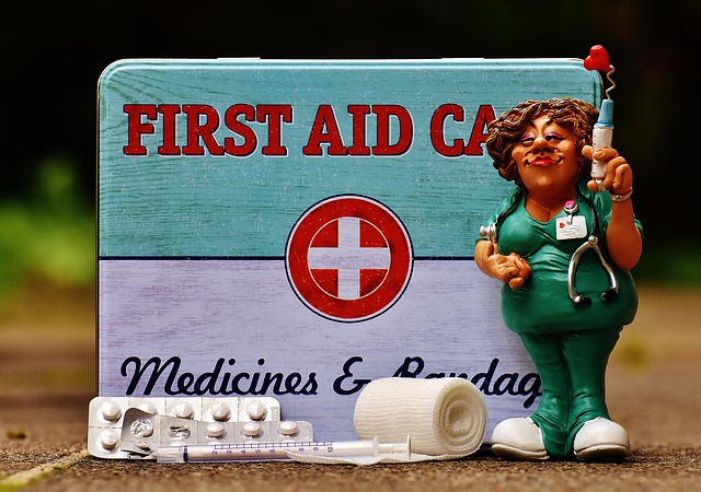 #1 – Have a pet first aid kit handy
