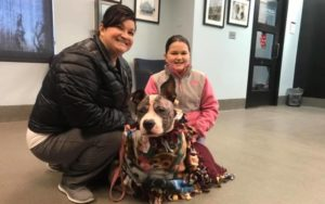 Severely Abused Rescue Canine Helps Household In Mourning Heal Their Hearts