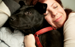 Ever Surprise Why Some Canines Don't Like Hugs? This Will Inform You