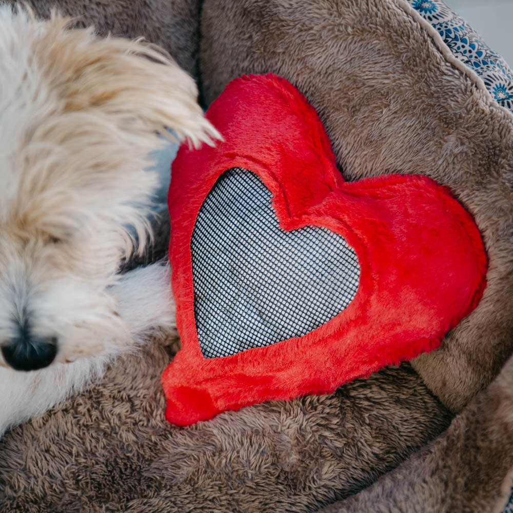 weve gone ahead and compiled a list of perfect valentines day gifts that your dog will love guaranteed read on to find all 8