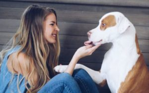 Grieving Canine Mother Warns Others Of Family Suffocation Danger