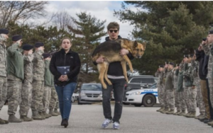 """Retired Army Canine Receives A Shifting """"Final Name"""" Salute"""